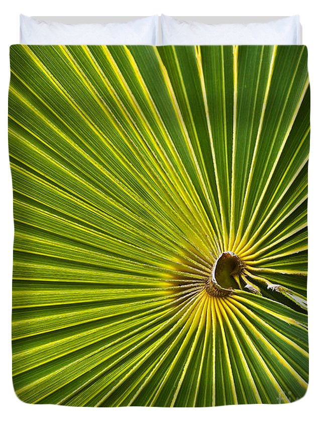 Palm Tree Duvet Cover featuring the photograph Starburst by Ursula Gill