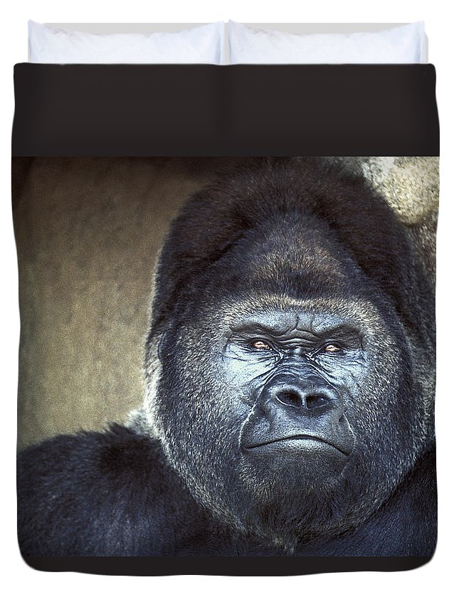 Gorilla Duvet Cover featuring the photograph Stare-down - Gorilla Style by Paul W Faust - Impressions of Light