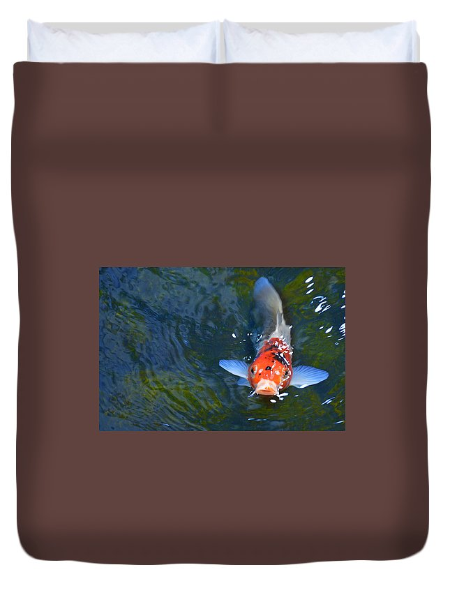 Koi Duvet Cover featuring the photograph Stare Down With A Koi by Wendy Raatz Photography