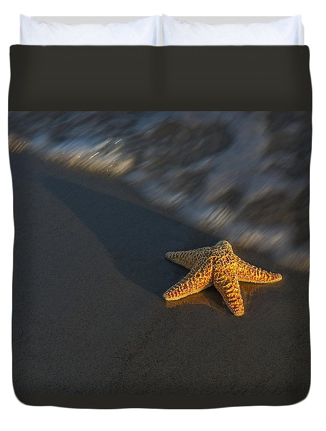 Star Duvet Cover featuring the photograph Starfish On The Beach by Susan Candelario
