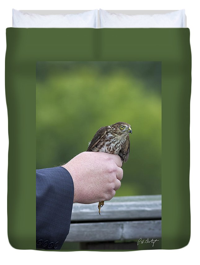 Accipiter Striatus Duvet Cover featuring the photograph Staring Back by Phill Doherty