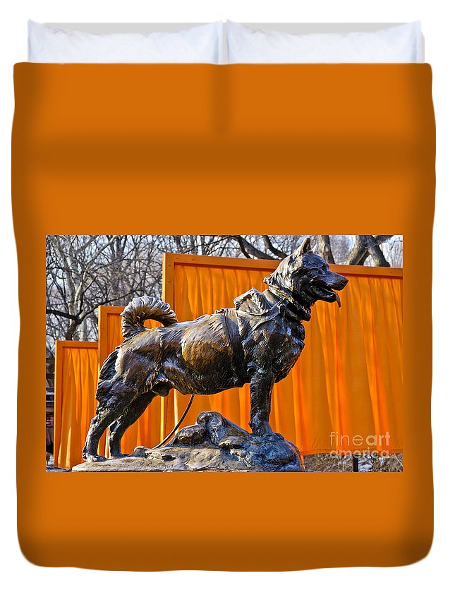 New York City Duvet Cover featuring the photograph Statue Of Balto In Nyc Central Park by Anthony Sacco