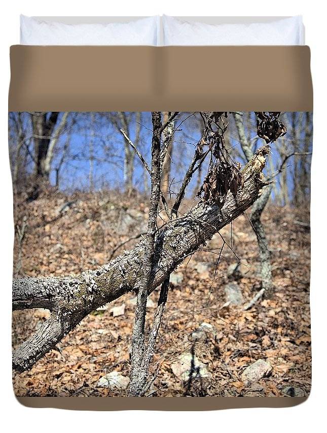 8113 Duvet Cover featuring the photograph Sticks And Stones by Gordon Elwell