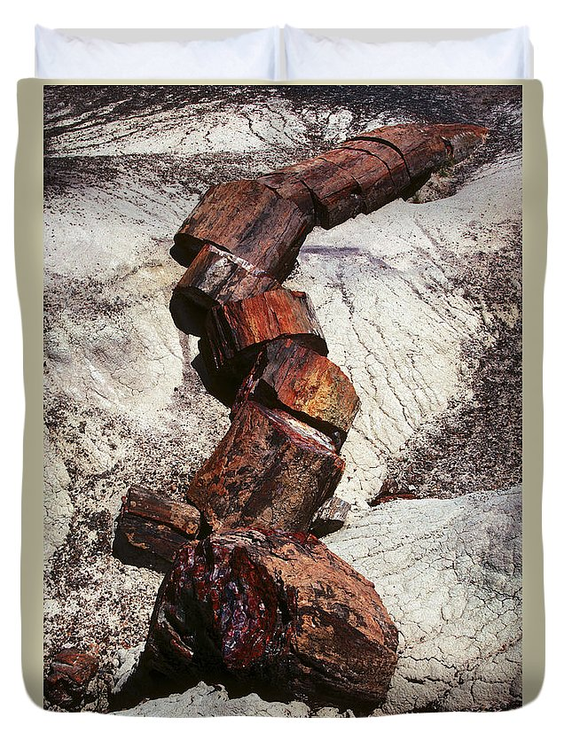 Petrified Forest Duvet Cover featuring the photograph Stone Trees - 337 by Paul W Faust - Impressions of Light
