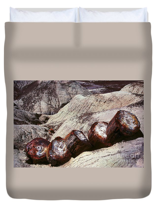 Petrified Forest Duvet Cover featuring the photograph Stone Trees - 360 by Paul W Faust - Impressions of Light