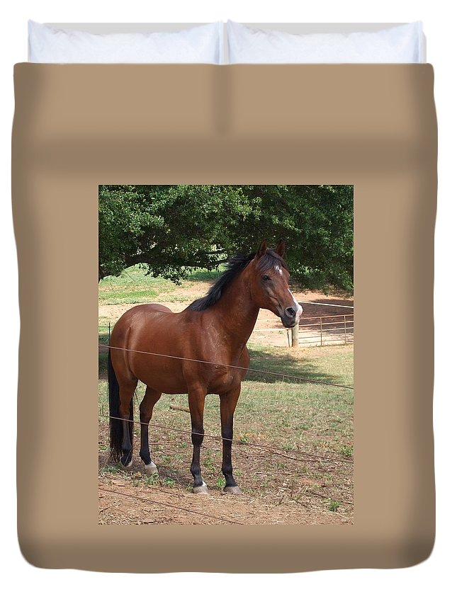 Horse Duvet Cover featuring the photograph Stormy by Lisa Wormell
