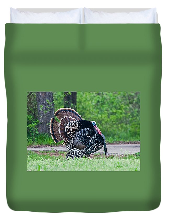 Turkey Duvet Cover featuring the photograph Struttin by Ronnie Prcin