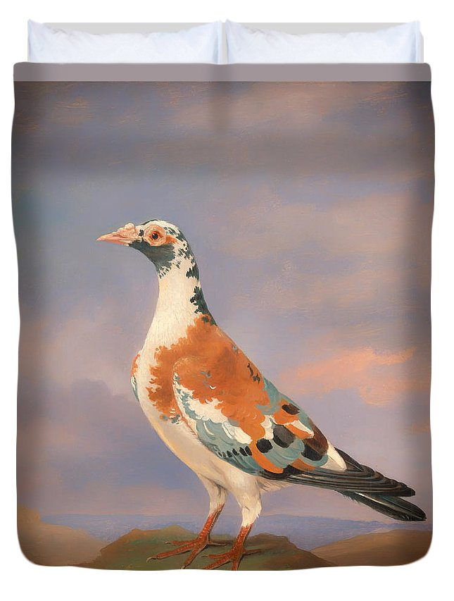 Painting Duvet Cover featuring the painting Study Of A Carrier Pigeon by Mountain Dreams