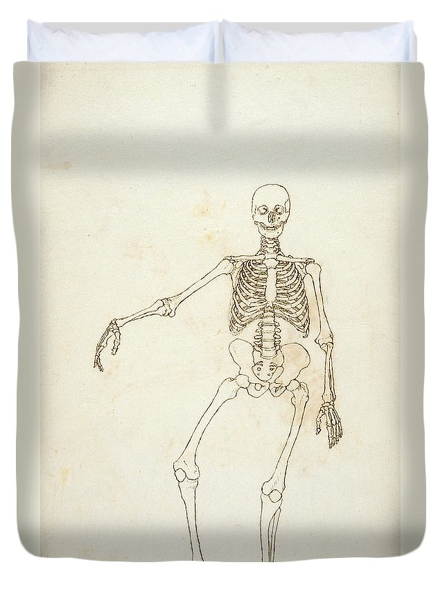 Drawing Duvet Cover featuring the photograph Study Of The Human Figure, Anterior View, From A Comparative Anatomical Exposition Of The Structure by George Stubbs