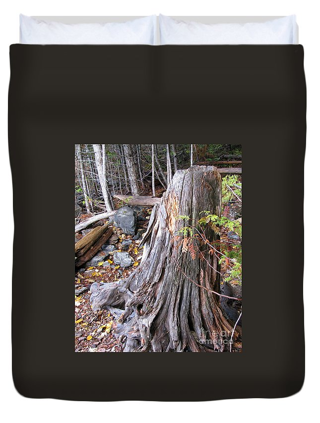 Tree Duvet Cover featuring the photograph Stump by Leone Lund