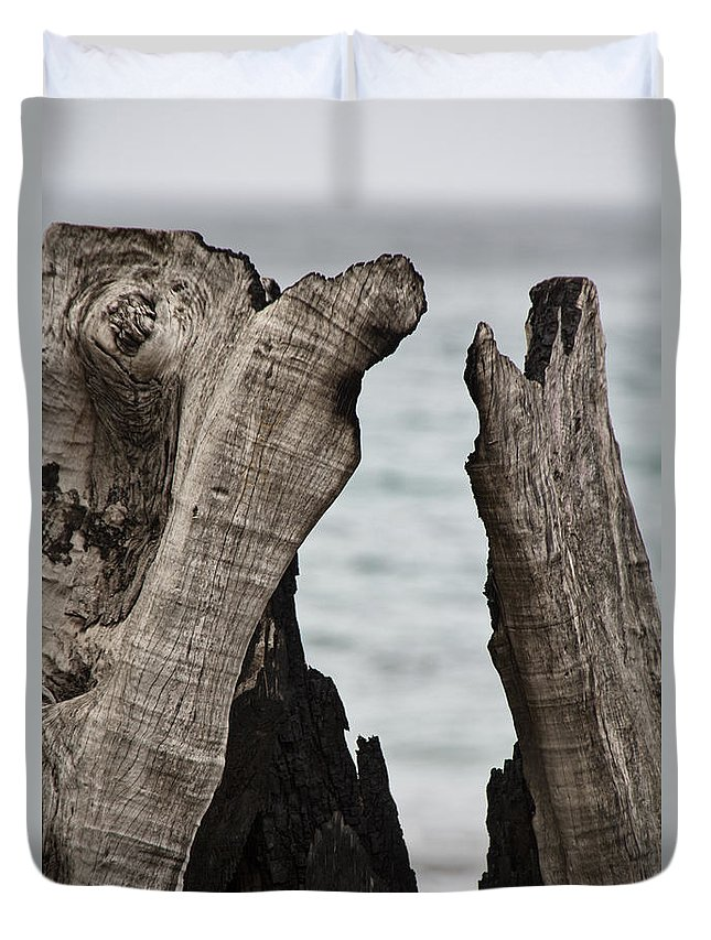 Tree Duvet Cover featuring the photograph Stumped V3 by Douglas Barnard