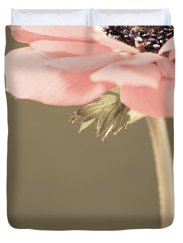 Flower Duvet Cover featuring the photograph Subdued Anemone by Caitlyn Grasso