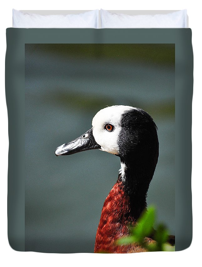 Duck Duvet Cover featuring the photograph Such A Beauty by Diane Wood