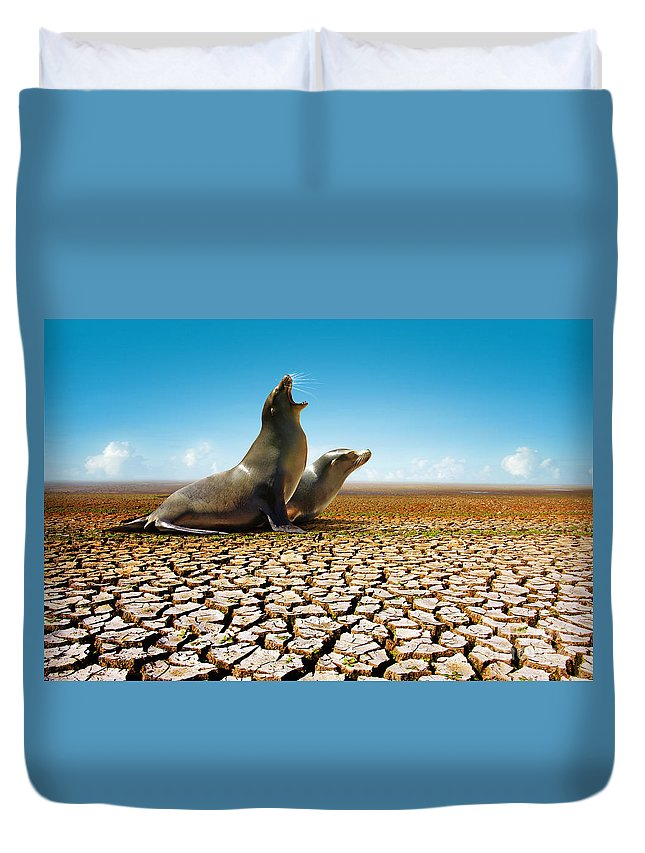 Animal Duvet Cover featuring the photograph Suffering Seals by Carlos Caetano