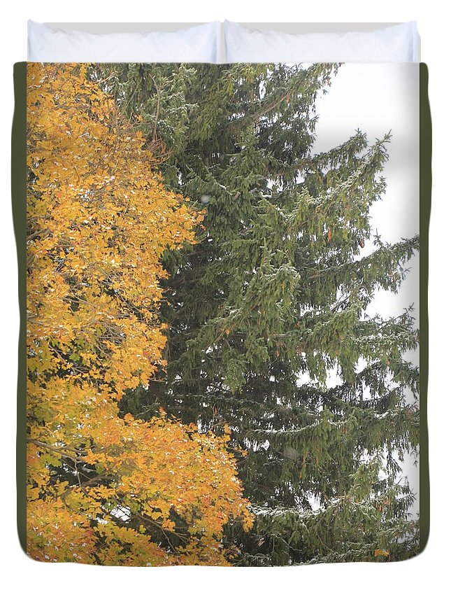 Christmas Tree Duvet Cover featuring the photograph Sugar Maple And Evergreen by Valerie Collins