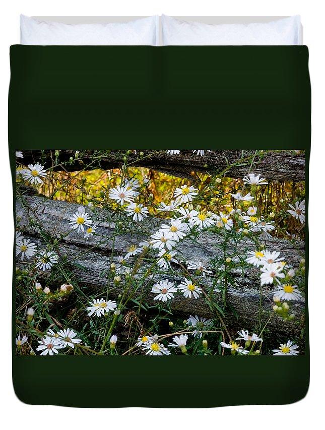 Daisy Duvet Cover featuring the photograph Summer Fence by Sandra Clark