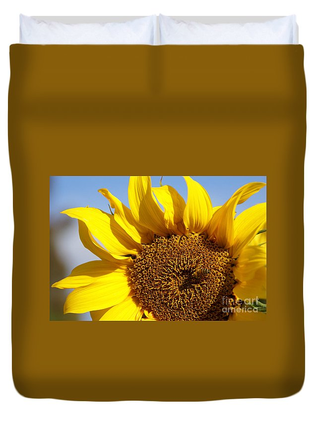 Sunflower Duvet Cover featuring the photograph Summer Love by Linda Shafer