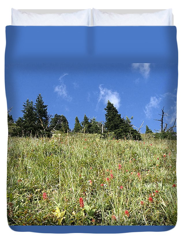 Agriculture Duvet Cover featuring the photograph Summer Mountain Landscape by Roderick Bley