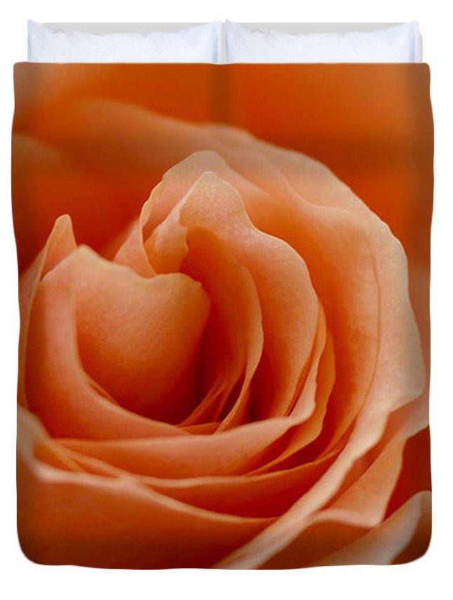 Peach Duvet Cover featuring the photograph Summer Peach by Carol Lynch