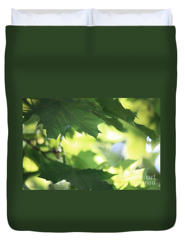 Nature Duvet Cover featuring the photograph Summer Sunshine by Carol Groenen
