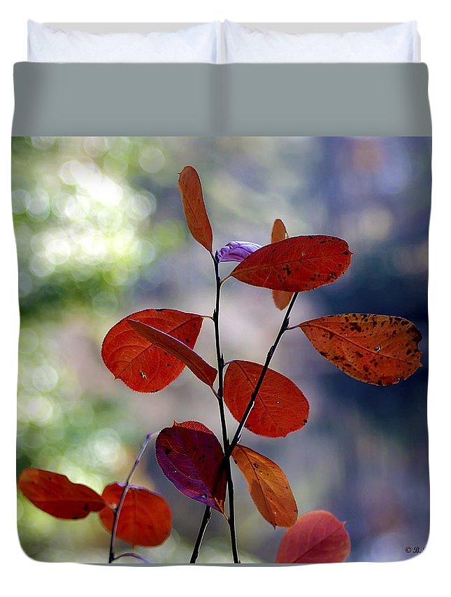 2d Duvet Cover featuring the photograph Summer's End by Brian Wallace