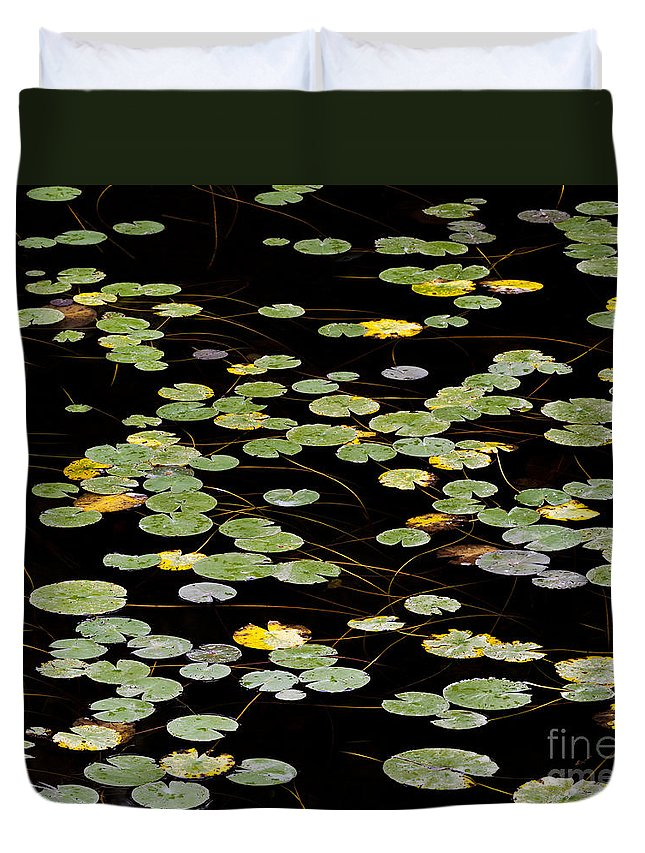 Summer Duvet Cover featuring the photograph Summer's End Lily Pads by Alan L Graham