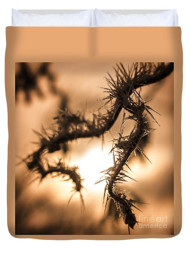 Background Duvet Cover featuring the photograph Sun And Frost by Andrea Goodrich