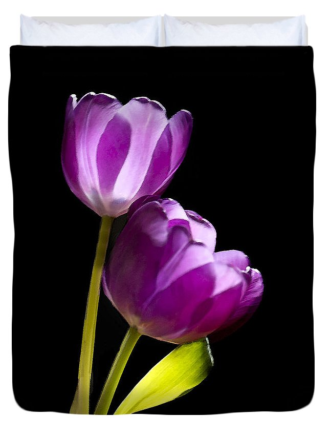 Tulip Duvet Cover featuring the photograph Sun Kissed by Betty LaRue