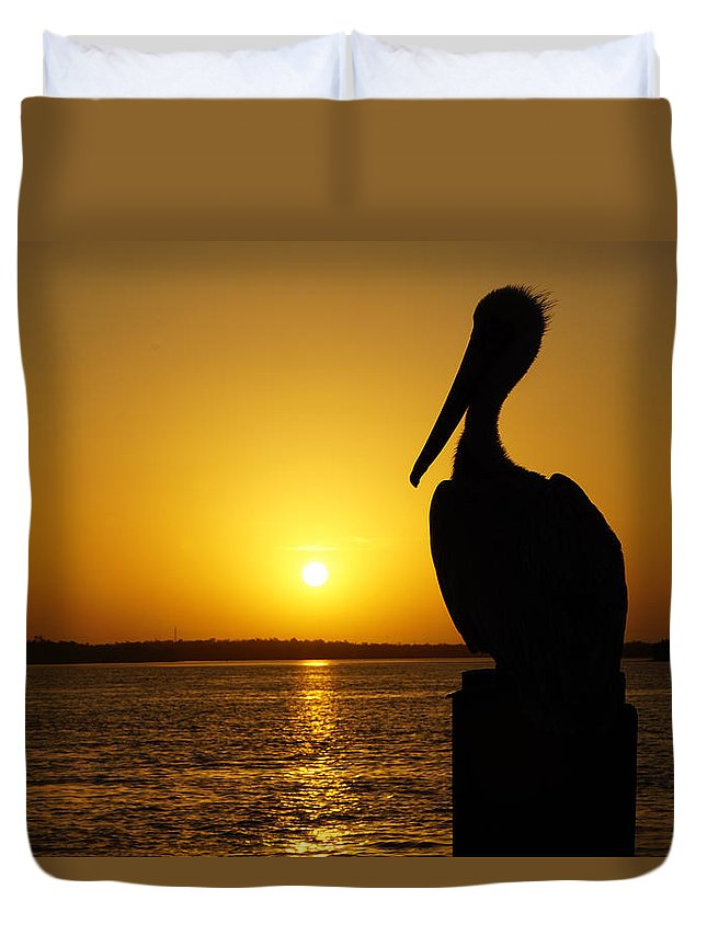 Sunrise Duvet Cover featuring the photograph Sun Pelican by Joey Waves