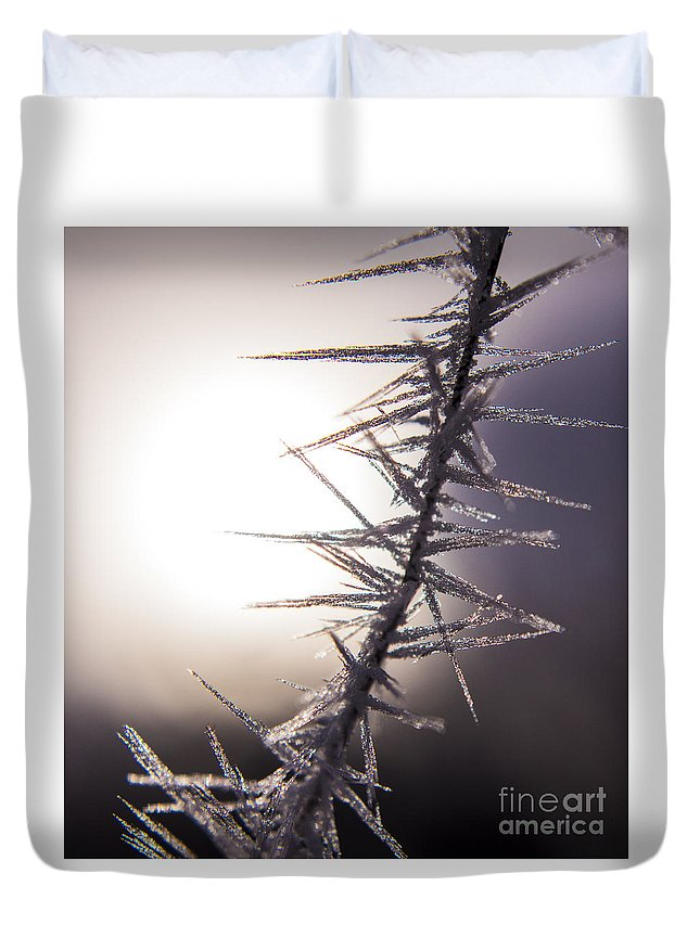 Background Duvet Cover featuring the photograph Sun Spikes by Andrea Goodrich