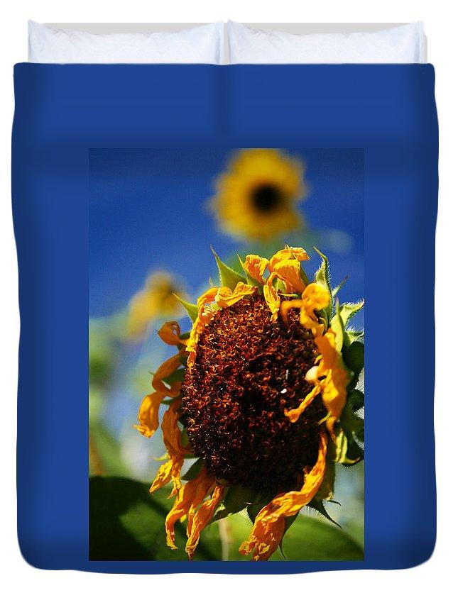 Sunflower Duvet Cover featuring the photograph Sunflower Four by David Sanchez