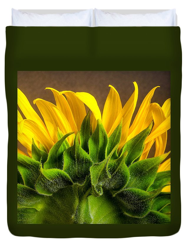 Sunflower Duvet Cover featuring the photograph Sunflower by Linda Mcfarland