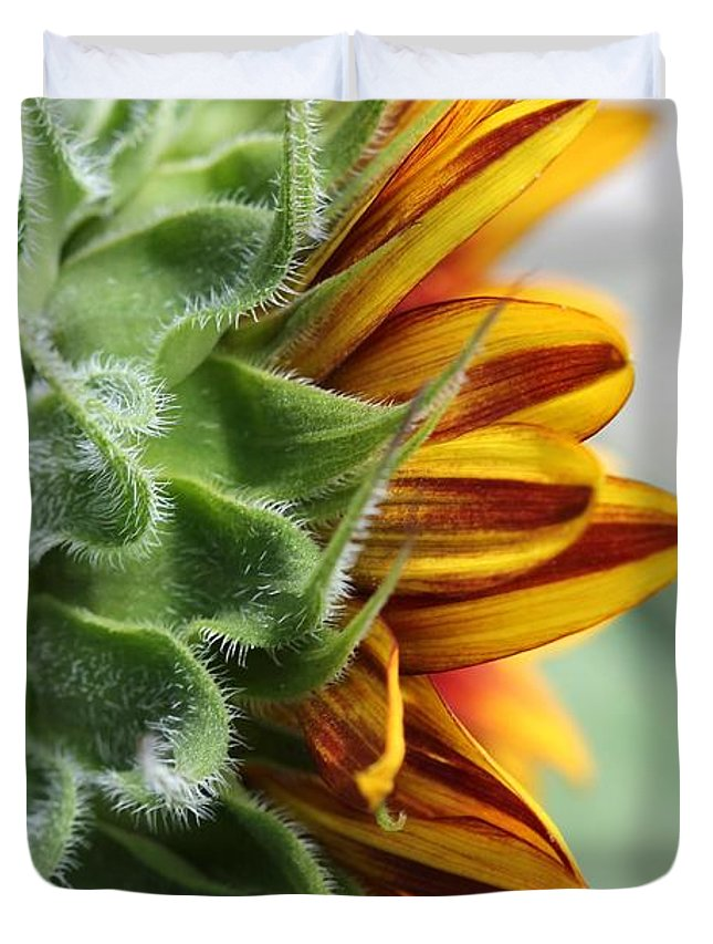 Mccombie Duvet Cover featuring the photograph Sunflower Named The Joker by J McCombie