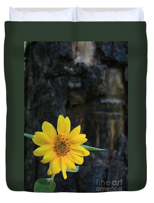 Flower Duvet Cover featuring the photograph Sunflower Power by Kathy DesJardins
