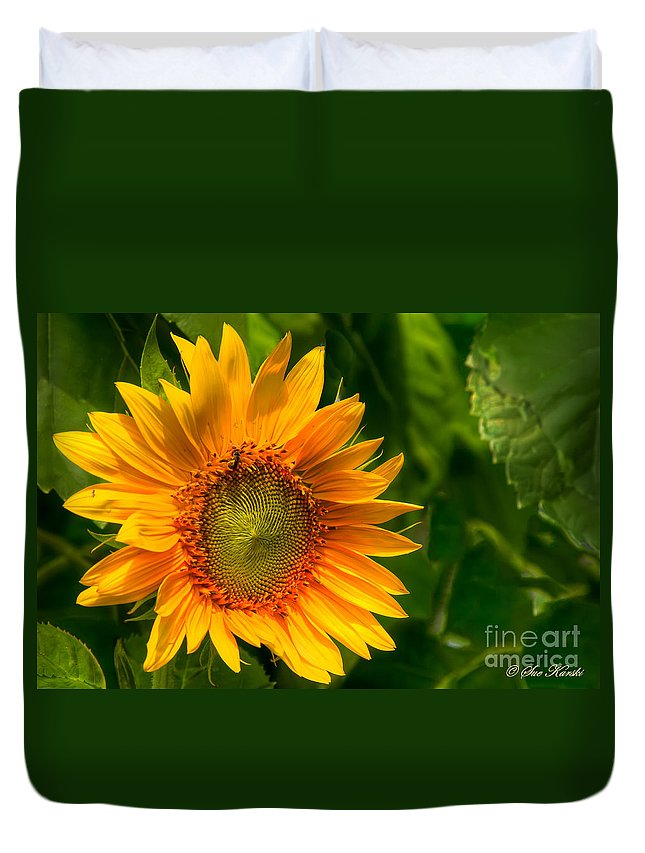 Foliage Duvet Cover featuring the photograph Sunflower Single by Sue Karski