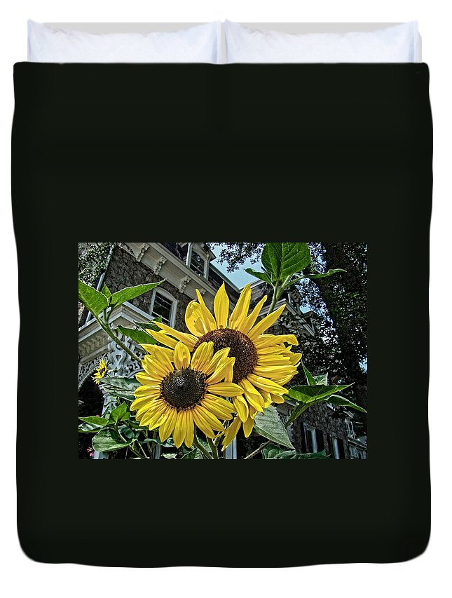 Sunflower Duvet Cover featuring the photograph Sunflower Under The Gables by Alice Gipson