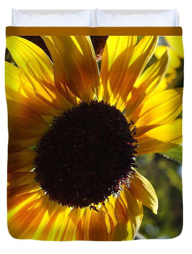 Sunflowers Duvet Cover featuring the photograph Sunflowers Alive And Free by Christina Shaskus