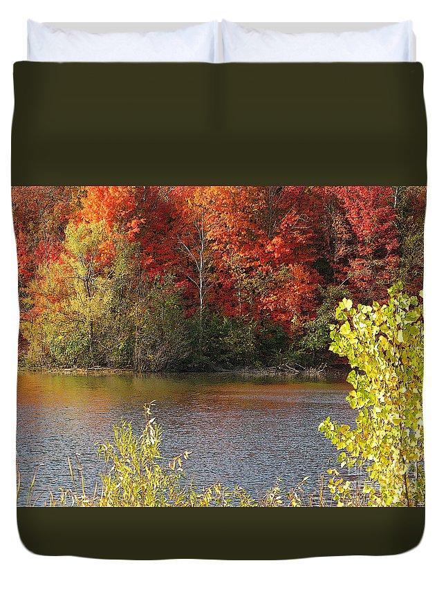 Autumn Duvet Cover featuring the photograph Sunlit Autumn by Ann Horn