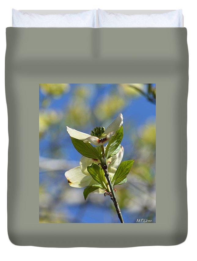 Sunlit Dogwood Blossoms Duvet Cover featuring the photograph Sunlit Dogwood Blossoms by Maria Urso