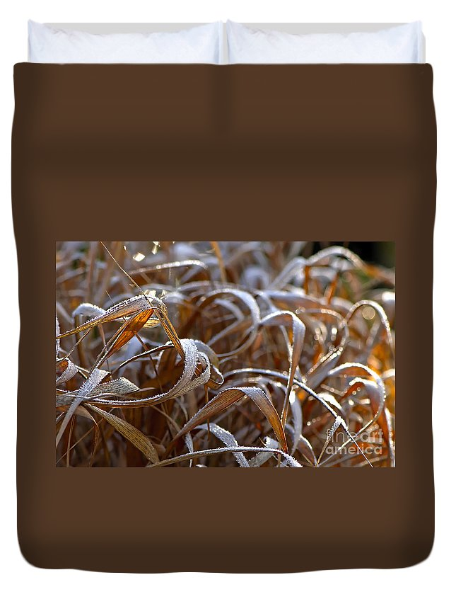 Frost Duvet Cover featuring the photograph Sunlit Frost by Sharon Talson