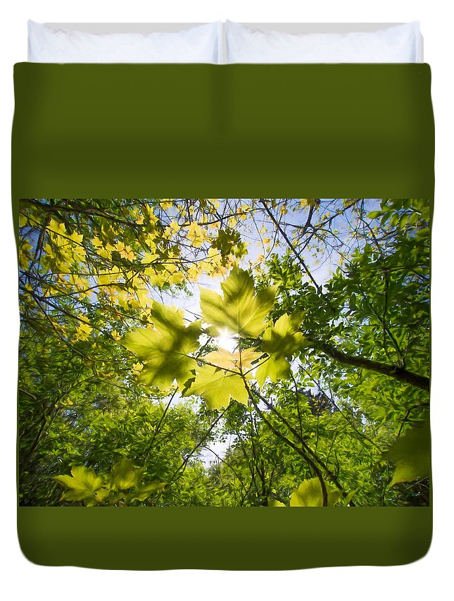 Backdrop Duvet Cover featuring the digital art Sunlit Leaves by Roy Pedersen