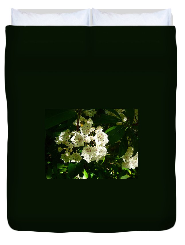 Pocono Duvet Cover featuring the photograph Sunlit Wildflower by Two Bridges North