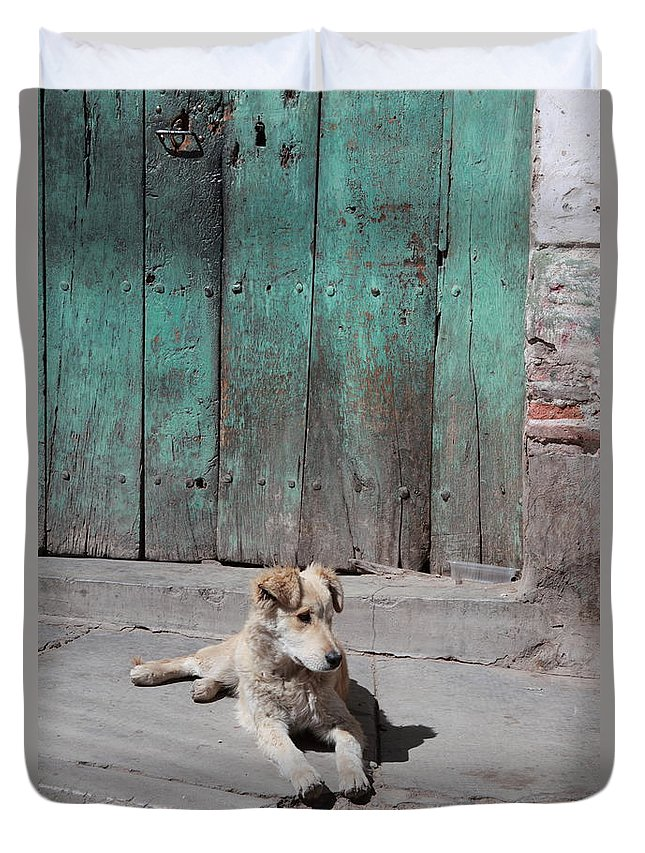Dog Duvet Cover featuring the photograph Dog Enjoying A Sunny Doorstep by James Brunker