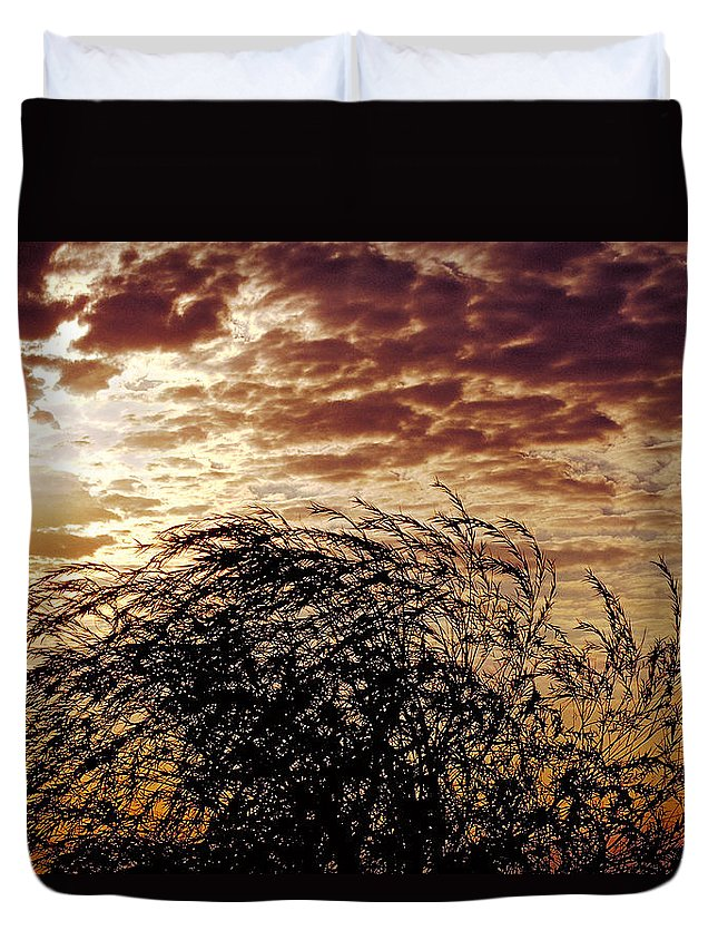 Nature Duvet Cover featuring the photograph Sunrise And Lacy Tree by Thomas Firak
