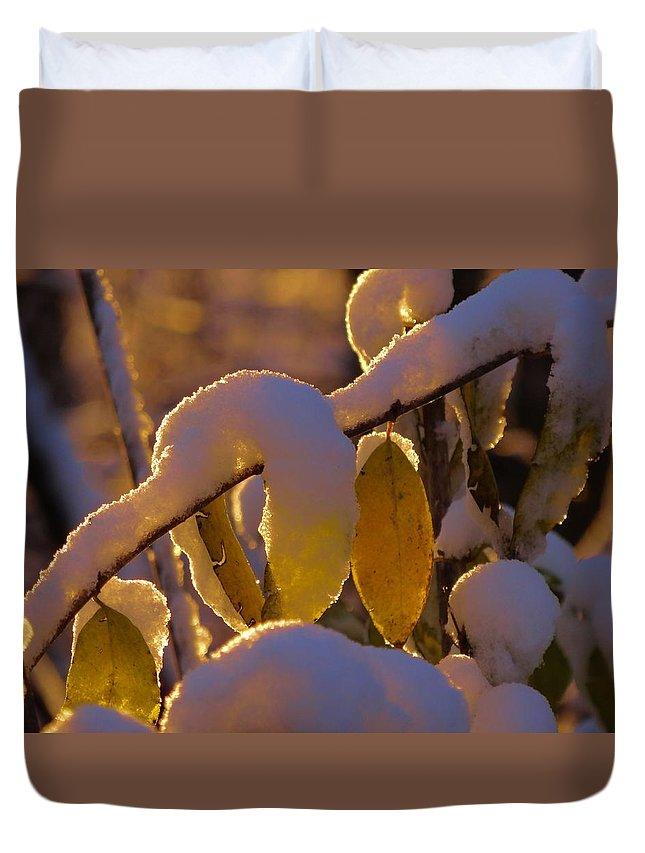 Sunrise On Autumn Snow Duvet Cover featuring the photograph Sunrise On Autumn Snow by Dan Sproul