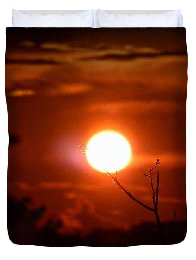 Sunset Duvet Cover featuring the digital art Sunset - Stuck On Tree Branch by Lilia D