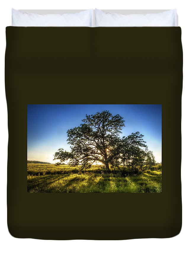 Sunset Duvet Cover featuring the photograph Sunset Oak by Scott Norris