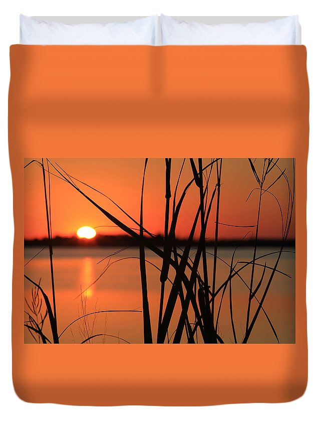 Cattail Duvet Cover featuring the photograph Sunset Over The Bay by Pete Federico