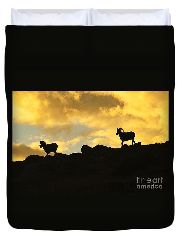 Landscape Duvet Cover featuring the photograph Sunset Walk by Sean Jungo