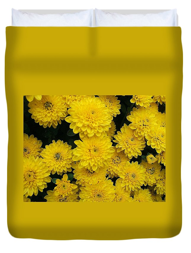 Floral Duvet Cover featuring the photograph Sunshine by Jo Dawkins